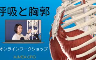 呼吸と胸郭 WS