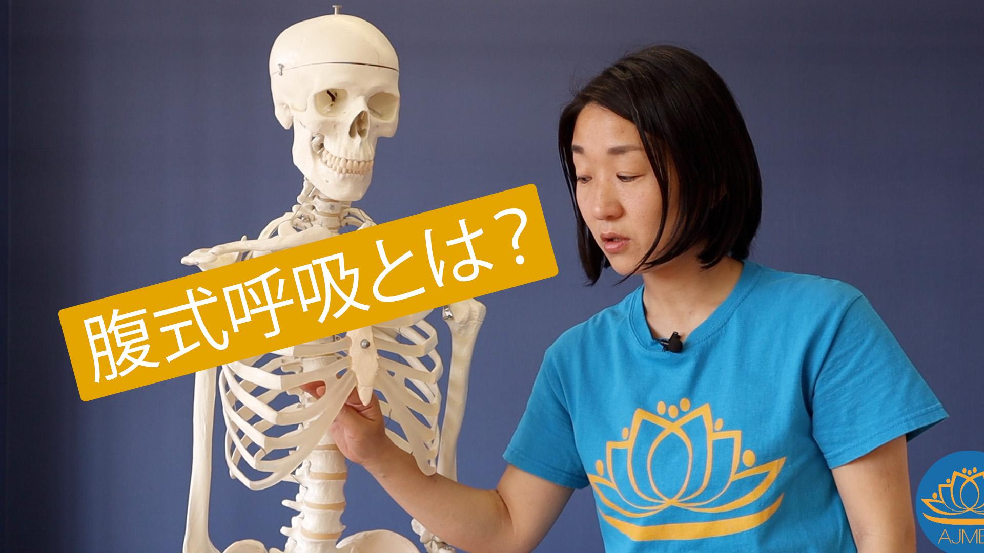 腹式呼吸とは youtube