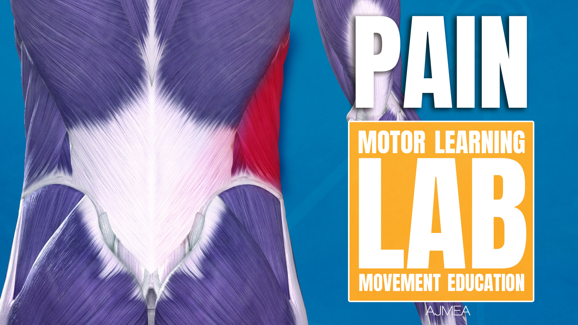 motor learning lab 痛み