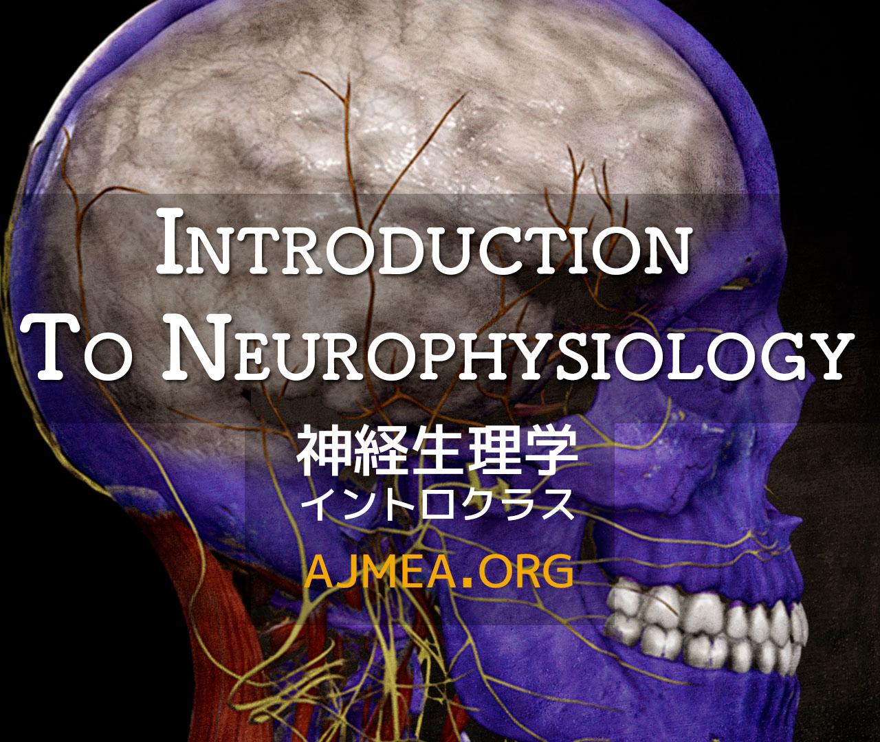 神経生理学イントロ